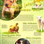 Der Edeka Markt und die Tierliebe