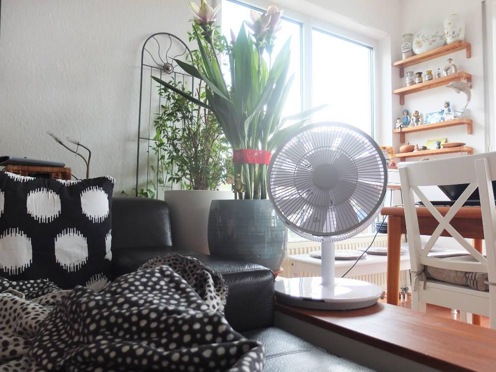 balmuda-green-fan-tischventilator
