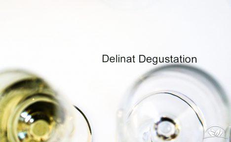 delinat-degustation-vegane-weine