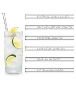 Halm Glasstrohhalme Gin Sprüche Edition 6 x 20 cm