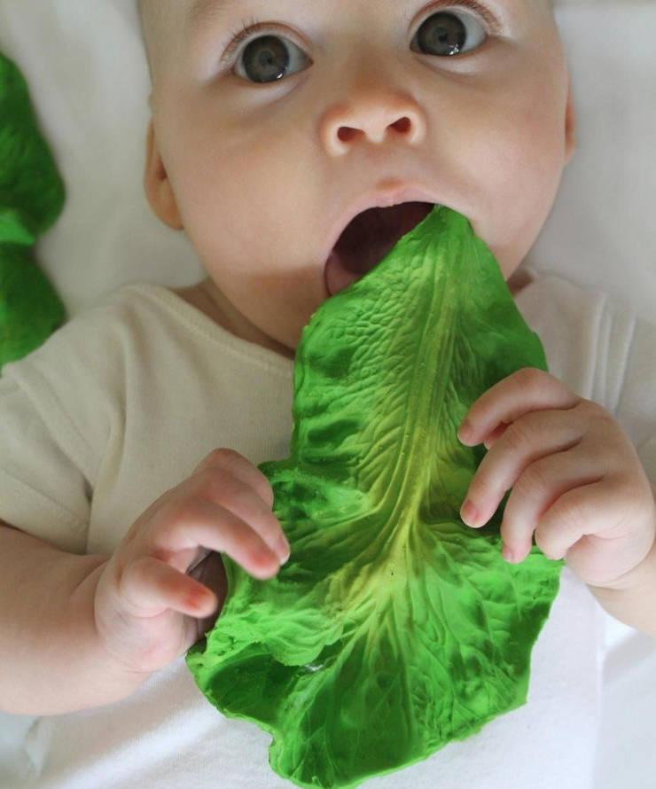 "Oli & Carol Badespielzeug ""Kendall the Kale"""
