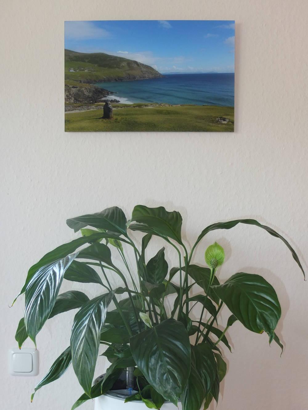 photocircle-nachhaltige-wandkunst