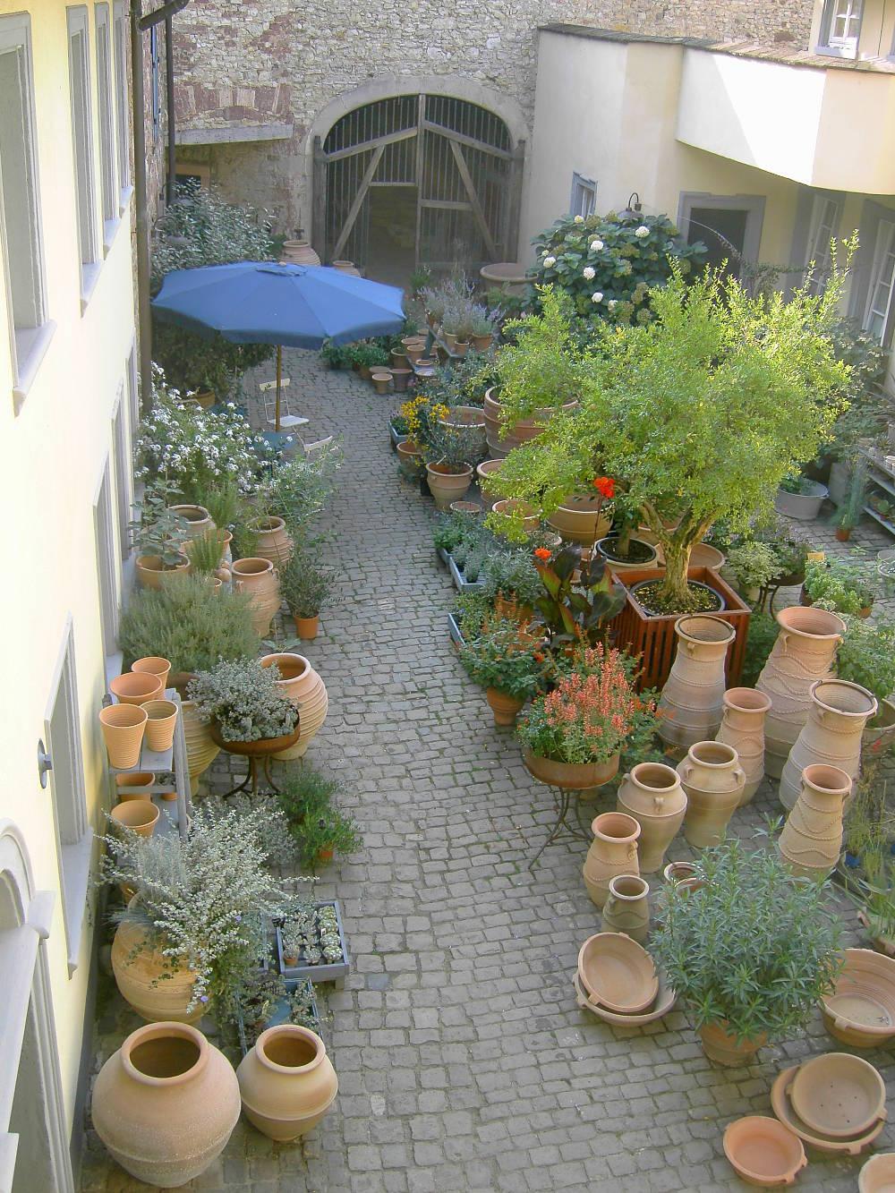 vegan und nachhaltig pflanzen in haus und garten terraveggia. Black Bedroom Furniture Sets. Home Design Ideas