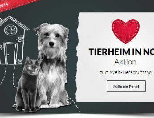 Spendenaktion beim Tierschutz-Shop.de: Tierheim in Not