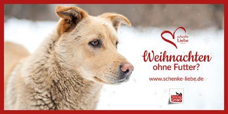 Tieren Helfen mit Tierschutz-Shop Wunschlisten und Spendenaktionen