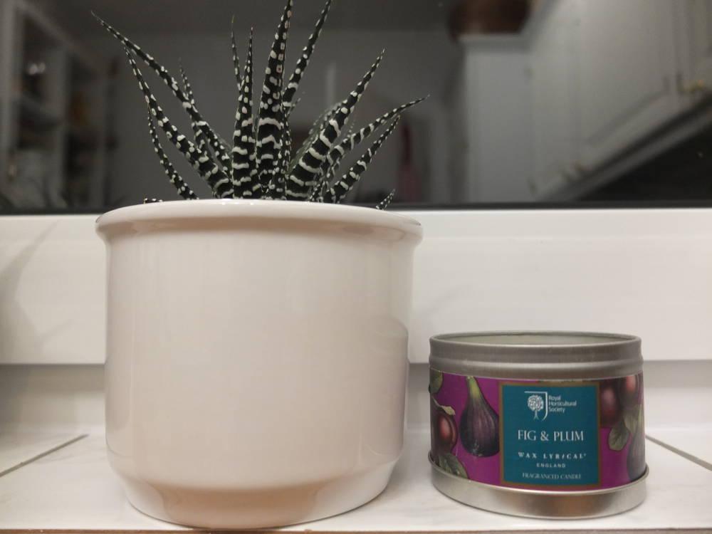 wax-lyrical-vegane-herzen-und-diffuser